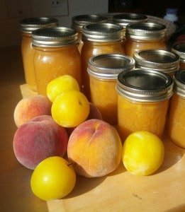 Low-sugar Peach and Yellow Plum Jam