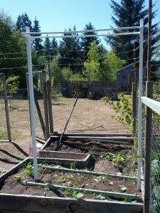 Empty Trellis for pole beans or climbing plants
