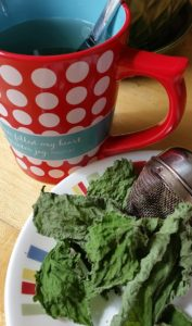How Stinging Nettles saved my sanity…Making Nettle Tea