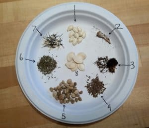 Seed Saving and a Giveaway.
