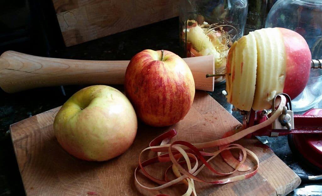 Preparing to make apple cider vinegar